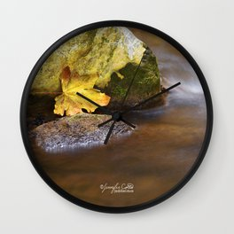 Trapped Leaf Wall Clock