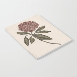 Mountain Laurel Notebook