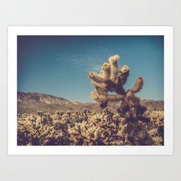 Cholla Cactus Garden Art Print