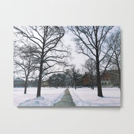 The Frozen Quad Metal Print