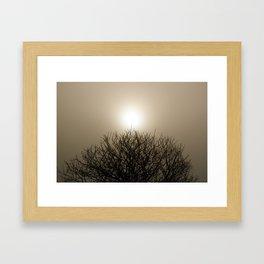 Shining Down Framed Art Print