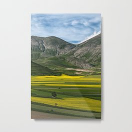 The fields of Castelluccio Metal Print