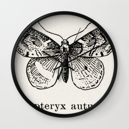 Leaf-rollers from Moths and butterflies of the United States (1900) by Sherman F Denton (1856-1937) Wall Clock