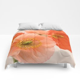 Old Fashioned Comforters