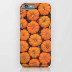 Pumpkin Patch Slim Case iPhone 6