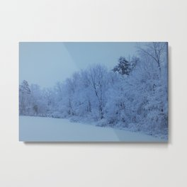 Snowy White with Arctic Filter Metal Print