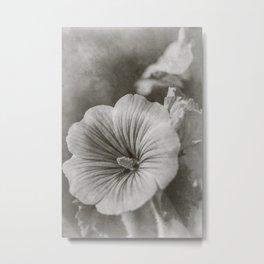 Timeless flowers #24 Metal Print