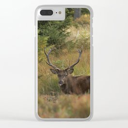 Red deer Clear iPhone Case