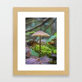 Slender Fungi Framed Art Print