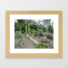 My Cactai Framed Art Print