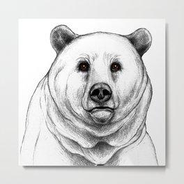 Grizzly Bear 2 Metal Print