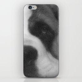 St. Bernard Portrait -- Black & White iPhone Skin