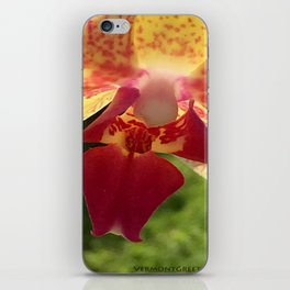 Yellow Orchid Flower Blossom from Mexico iPhone Skin