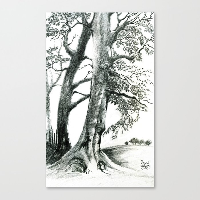 Pencil drawing: A collection of Trees Canvas Print by ...