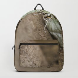 Butterfly with worn down wings Backpack