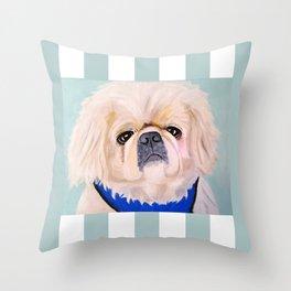 Peke Augie Blue Harness Throw Pillow