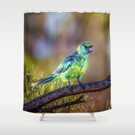 Mallee Ringneck Parrot Shower Curtain