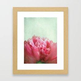 skykissed Framed Art Print