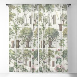 Adolphe Millot - Arbres A - French vintage botanical poster Sheer Curtain