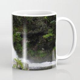 Chasing Waterfalls Coffee Mug