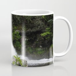 Chasing Waterfalls Coffee Mug