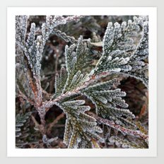 Lace on twigs Art Print