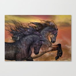 HORSES - On sugar mountain Canvas Print