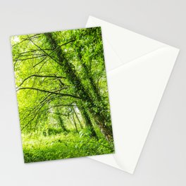 Wild nature parks I - Nature Fine Art photography Stationery Cards