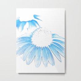 Echinacea-white background Metal Print