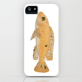 Malawi cichlids Labeotropheus trewavasae female iPhone Case