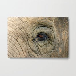 Through The Eye of the Elephant Metal Print