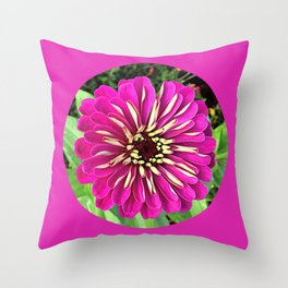 Magenta Bordered Zinnia Throw Pillow