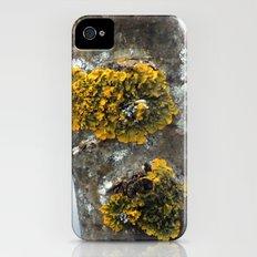 Yellow Moss Slim Case iPhone (4, 4s)