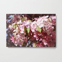 In Bloom - Flower Cluster Metal Print