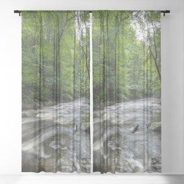 Appalachian Adventure - Ricketts Glen State Park Sheer Curtain