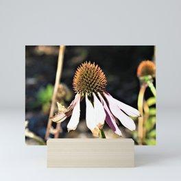 The of Season Mini Art Print