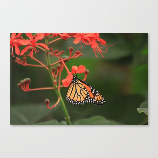 Special Request Canvas Print