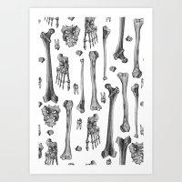 bones Art Prints featuring Bones by Deborah Panesar Illustration