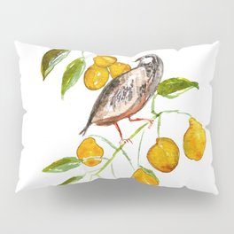 Partridge In a Pear Tree Pillow Sham