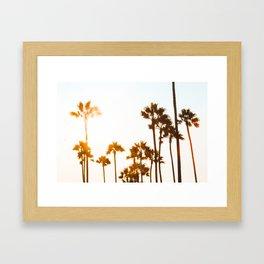 Venice Palms Framed Art Print