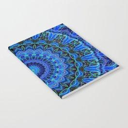 FLUX Notebook