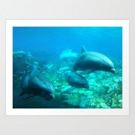 Under SeaWorld 2 Art Print