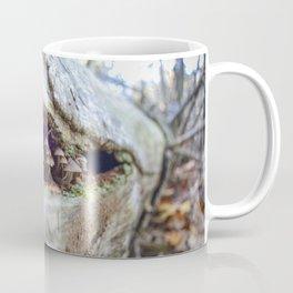 Mushroom Observers Coffee Mug