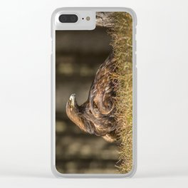 Grounded Eagle Clear iPhone Case
