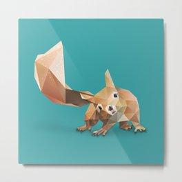 Squirrel. Metal Print