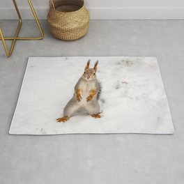 Do you have any boots for squirrels? Rug