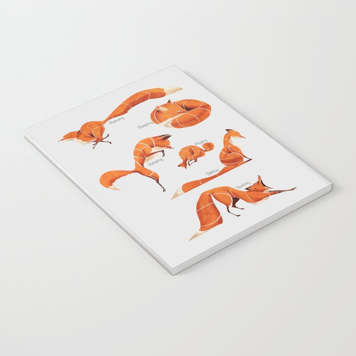 Fox poses Notebook
