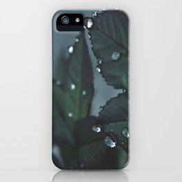 Botanical Still Life Raindrops on leaves iPhone Case