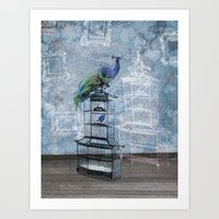 Quirky Peacock and Birdcage  Art Print