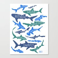 sharks Canvas Prints featuring SHARKS! by Jen Richards